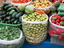 Variety of organic vegetable at market Royalty Free Stock Image