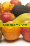 Variety Of Organically Grown Fruits Royalty Free Stock Image