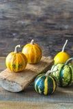 Variety of ornamental pumpkins royalty free stock image