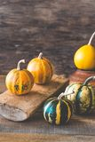 Variety of ornamental pumpkins stock image