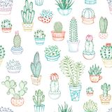 Vector seamless pattern of linear cacti and succulents. Stock Image