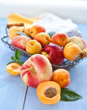Variety of peaches in a vintage basket Royalty Free Stock Photo