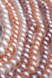 Variety of pearls Stock Image