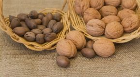 Variety of pecan nuts and others. Variety of healthy nuts on rustic background Stock Image