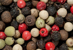 A variety of peppercorns. Close-up image of a variety of peppercorn Royalty Free Stock Photos