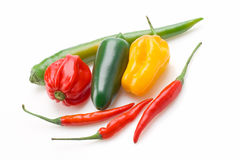 Variety of peppers Royalty Free Stock Photos