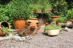 Variety of pots and plants Stock Images