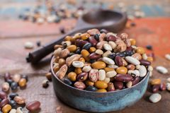 Variety of protein rich colorful raw dried beans. On wooden table Royalty Free Stock Images