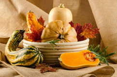 Variety of pumpkins in basket Stock Photos