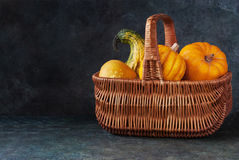 Basket with pumpkins. Variety of pumpkins in the basket on a dark background Royalty Free Stock Photos