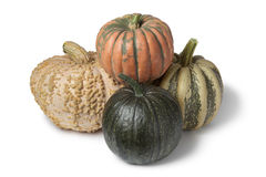 Variety of pumpkins Royalty Free Stock Photography