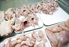 Variety of raw chicken pieces in tray at store Royalty Free Stock Photo