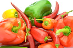 Variety of raw peppers isolated on white Stock Photos