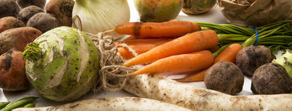 Variety of Raw Vegetables Royalty Free Stock Photos