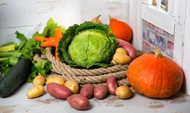 Variety of raw vegetables to cooking pot-au-feu Stock Image