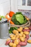 Variety of raw vegetables to cooking pot-au-feu Royalty Free Stock Photography