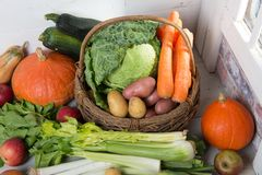 Variety of raw vegetables to cooking pot-au-feu Royalty Free Stock Photos