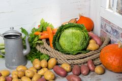 Variety of raw vegetables to cooking pot-au-feu Stock Photo