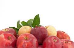 Variety of red and yellow apples with leaves Royalty Free Stock Images