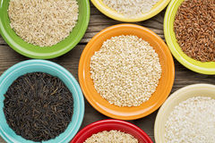 Variety of rice grains Stock Photography
