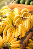 Variety of ripe bananas Stock Photos