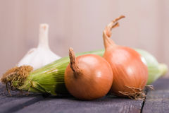 Variety of ripe raw vegetables Royalty Free Stock Image