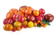Variety of ripe tomatoes isolated Stock Photos