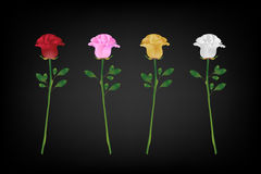 Variety of rose for valentines day (Vector eps10). Red, pink,yellow and white rose Stock Photography
