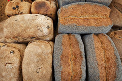 Variety of Rustic Breads 2 Stock Image