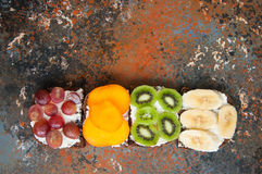 Variety of rye bread toasts with fruits. Stock Photography