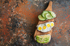 Variety of rye bread toasts with vegetables. Cucumber seeds chee Royalty Free Stock Photo