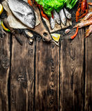variety of seafood on a fishing net. Royalty Free Stock Photos