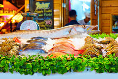 Variety of seafood on night market in Thailand Royalty Free Stock Photography