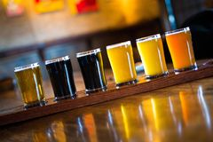 A variety set of craft beers light and dark stock photography