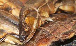 Variety of smoked fish Royalty Free Stock Photo
