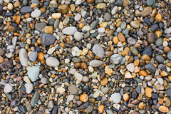 A variety of smooth stones on beach Stock Image