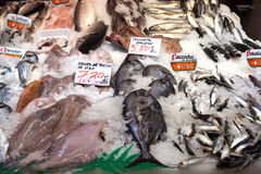A variety of spanish fish on a fishmonger stall Stock Photos