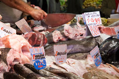 A variety of spanish fish on market stall in Spain Royalty Free Stock Photos