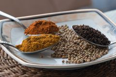 A variety of spices Stock Photos