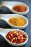 Variety of spices. In the bowls: espelette chili, curry powder, paprika Stock Photos
