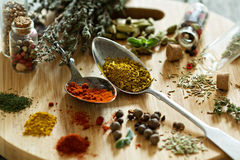 Variety of spices and herb on a wooden board Royalty Free Stock Photo