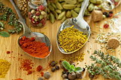 Variety of spices and herb on a wooden board Stock Photos
