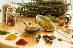 Variety of spices and herb on a wooden board Stock Image