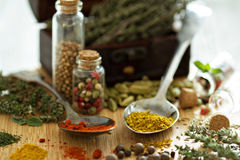 Variety of spices and herb on a wooden board Stock Images