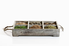 Variety of spices and herbs in wooden box on white background Stock Images