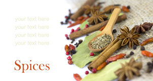 A variety of spices  isolated Royalty Free Stock Photos