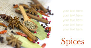 A variety of spices  isolated Stock Photography