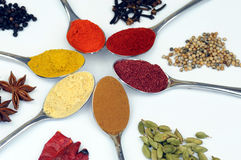 Variety of spices isolated on white background Stock Photo