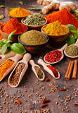 Variety of spices on kitchen table Stock Photo