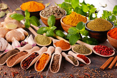 Variety of spices on kitchen table Royalty Free Stock Photo